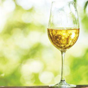 chardonnay-fresh-choice-nelson