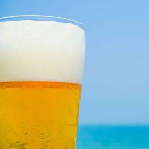 Eddyline Beer Nelson