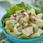 autumn salad nelson