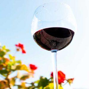 NZ Red Wines
